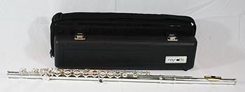 Reynolds Flute