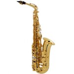 Selmer (Paris) Jubilee Series II Alto Saxophone - Gold Plating